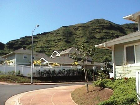 Neighborhood in Oahu